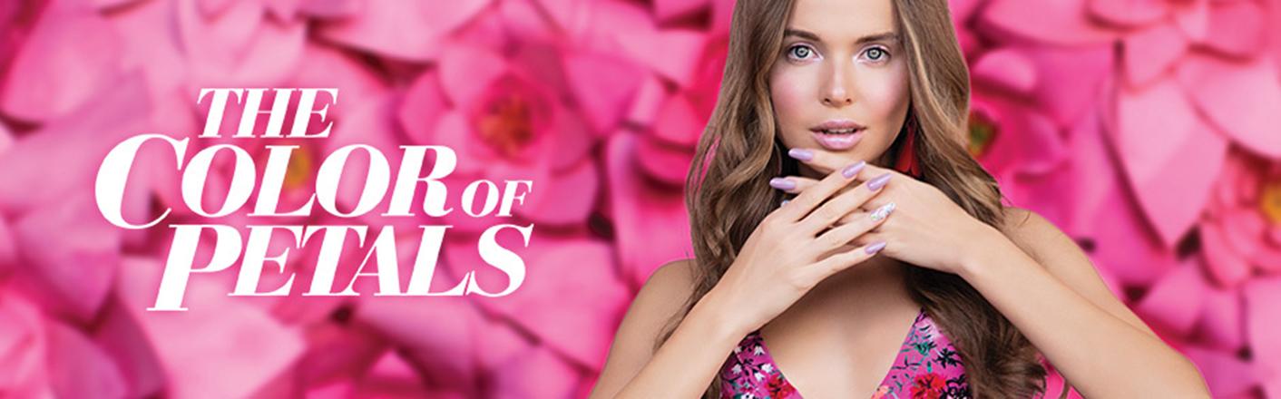 The Colors of Petals